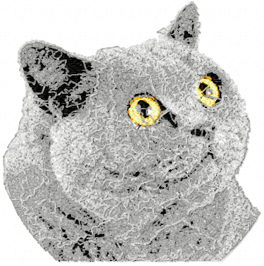 British Shorthair Cat free embroidery design