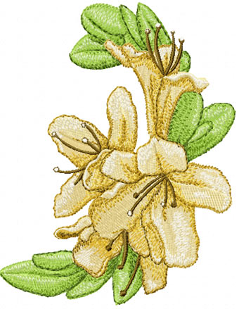 Free embroidery designs and Free machine embroidery designs